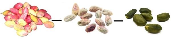 Peeled Unripe Pistachios