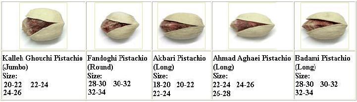 Iranian Pistachios Categories