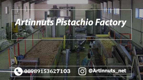 Artinnuts Pistachio Factory
