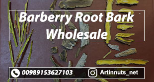 Barberry Root Bark