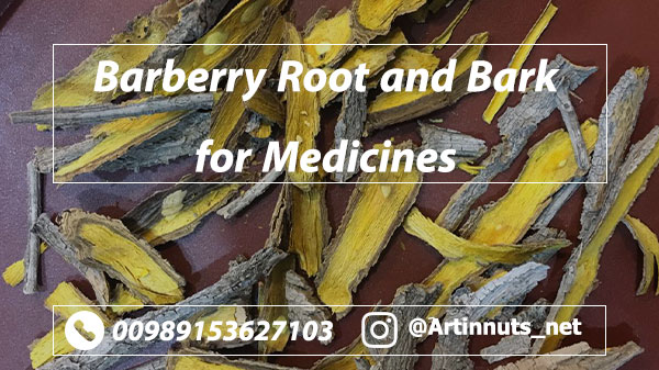 Barberry Bark Medicines