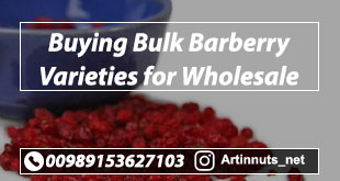 Buying Bulk Barberry