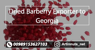 Dried Barberry Exporter