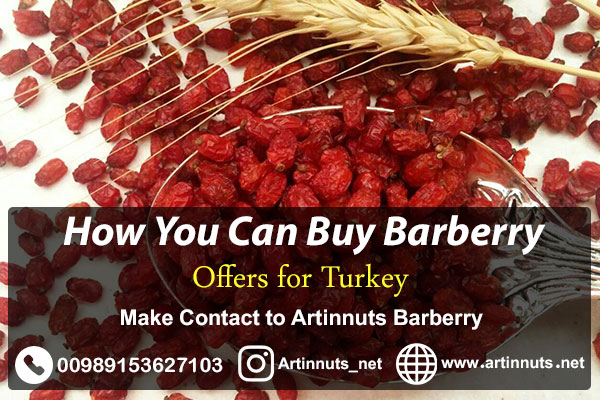 Barberry Exporter to Turkey