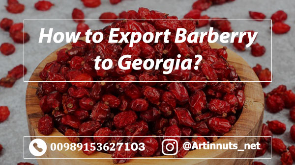 Barberry Exporter to Georgia