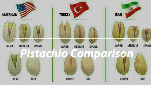 Pistachio Comparison