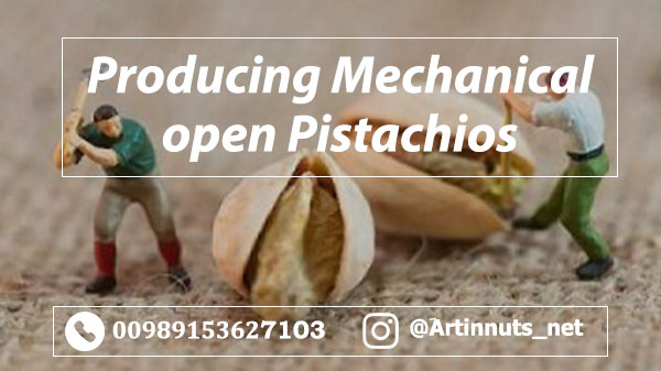 Mechanical Open Pistachios