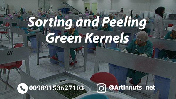 Peeling Green Pistachios