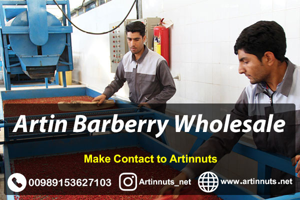 Artin Barberry Wholesale