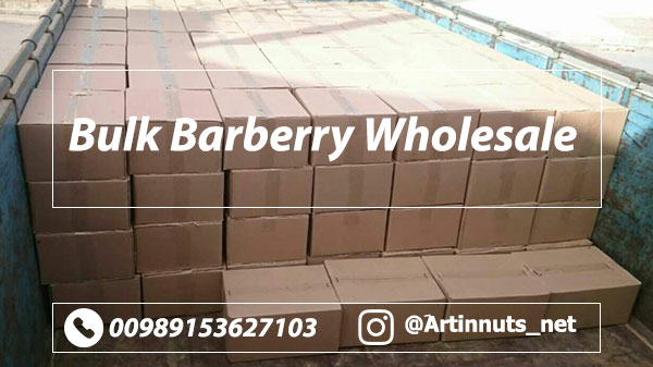 Bulk Barberry Wholesale
