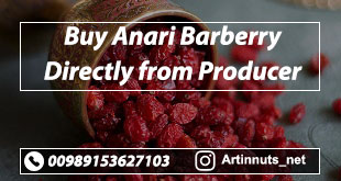 Buy Anari Barberry