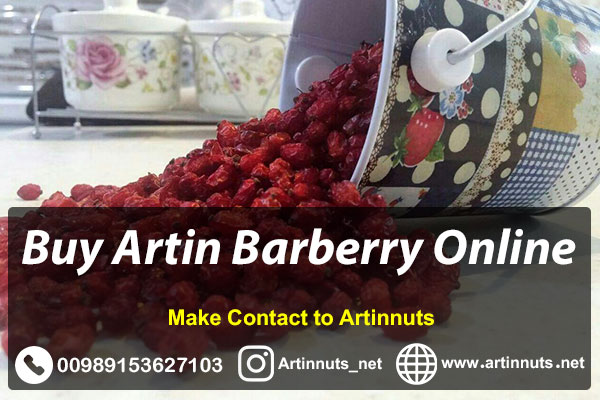 Buy Artin Barberry