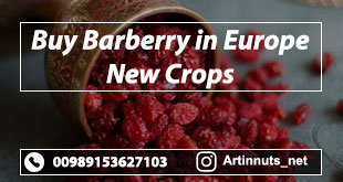 Buy Barberry in Europe
