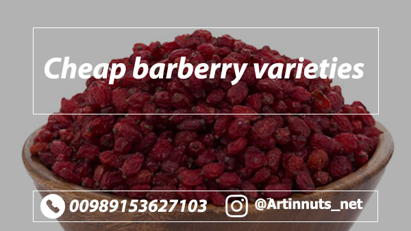 Cheap Barberry
