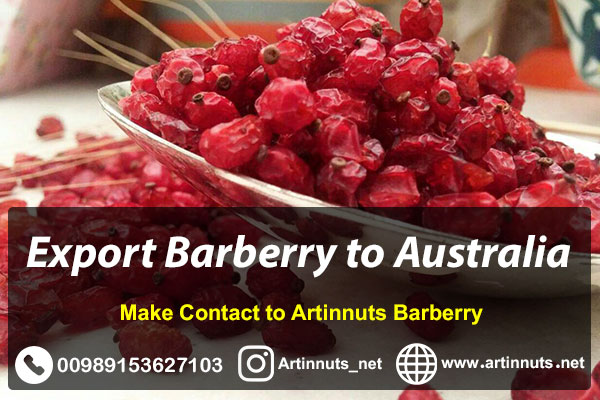 Export Barberry to Australia