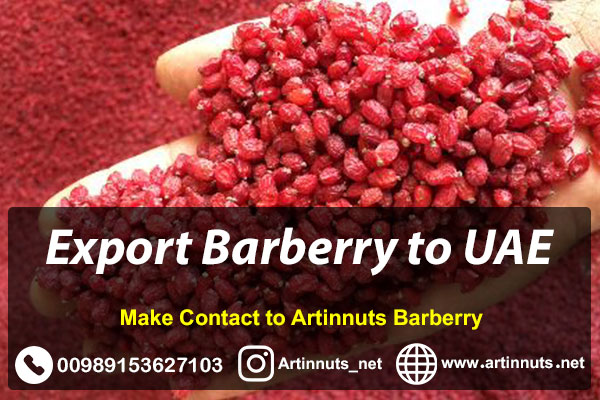 Export Barberry to UAE