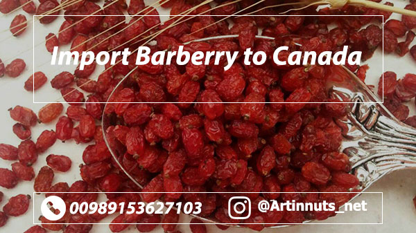 Import Barberry to Canada