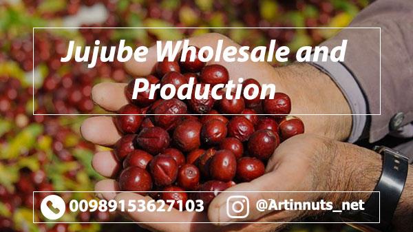 Jujube Wholesale