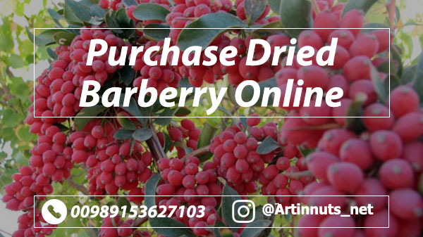 Purchase Dried Barberry