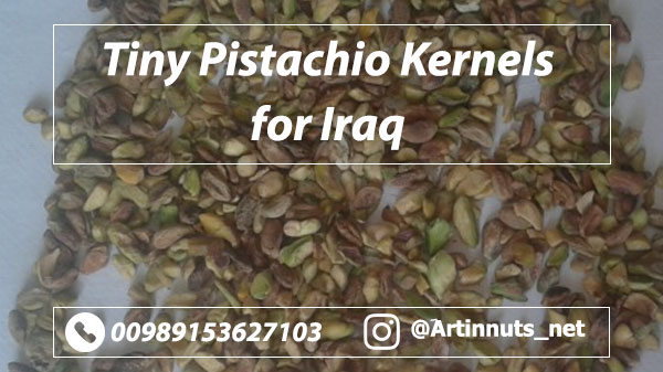 Pistachio Kernels for Iraq