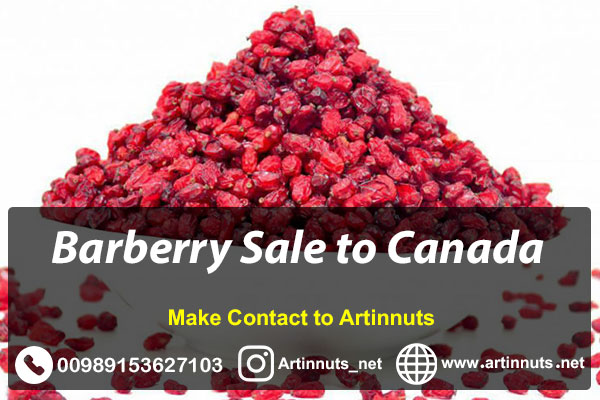Barberry Sale to Canada