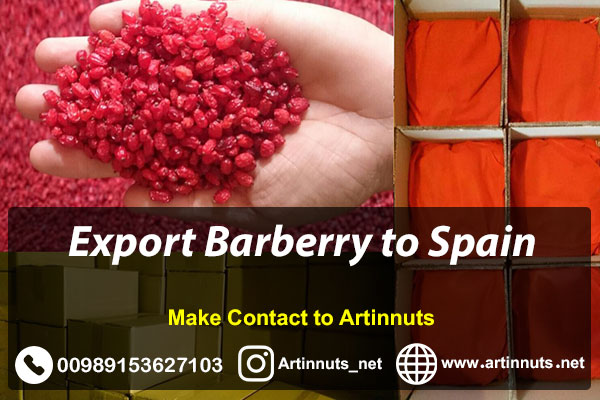 Export Barberry to Spain