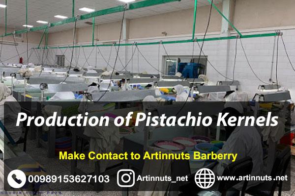 Pistachio Kernels Production