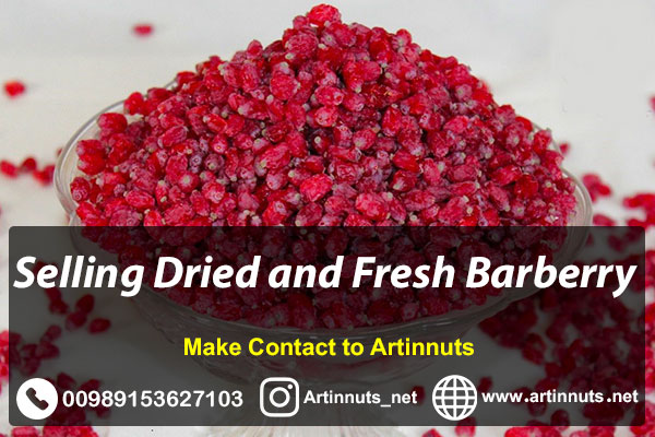 Dry and Fresh Barberry