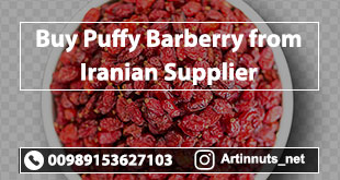 Buy Puffy Barberry