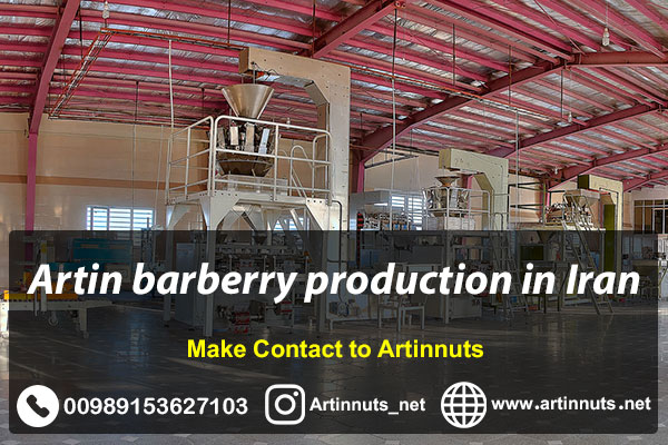 Artin Barberry Production