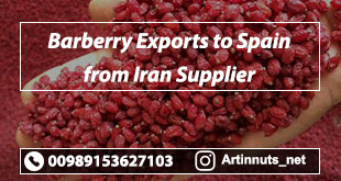 Barberry Exports to Spain