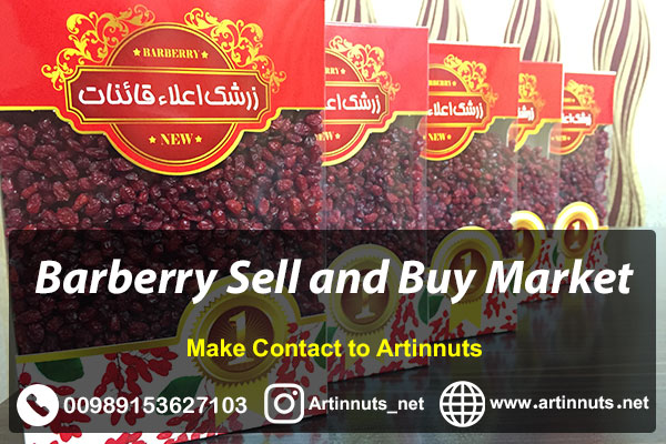 Barberry Sell Buy