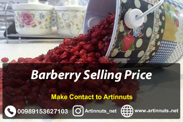 Barberry Selling Price