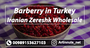 Barberry in Turkey