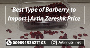 Barberry to Import