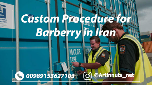 Iranian Barberry Export