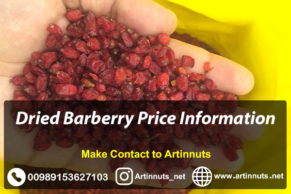Barberry Price Information