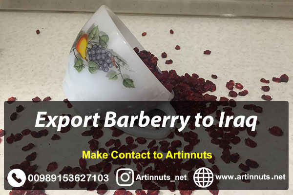 Export Barberry to Iraq