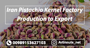 Pistachio Kernel Factory