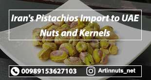 Pistachios Import to UAE