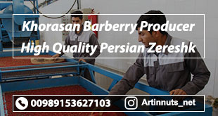 Khorasan Barberry Producer
