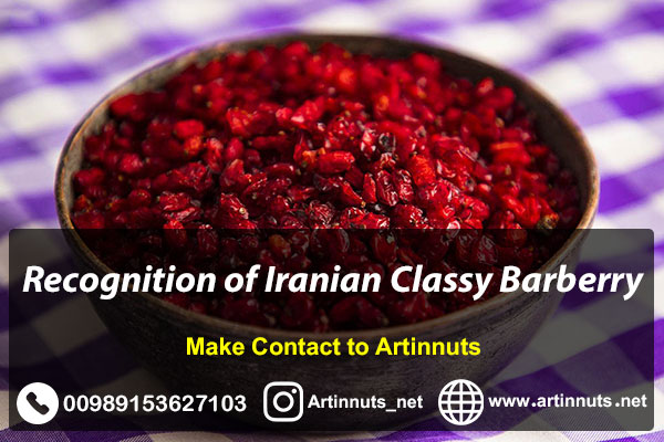 Iranian Best Barberry