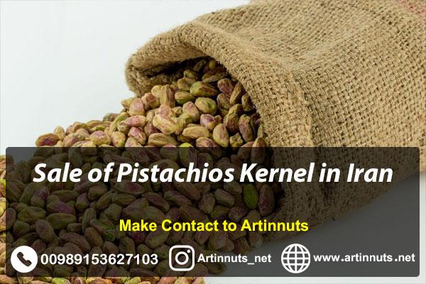 Pistachios Kernel Sale