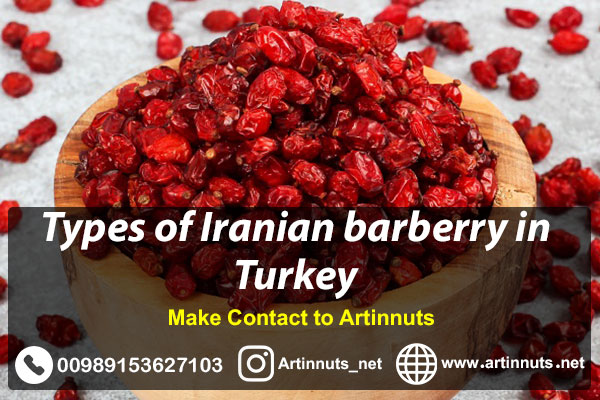 Barberry in Turkey