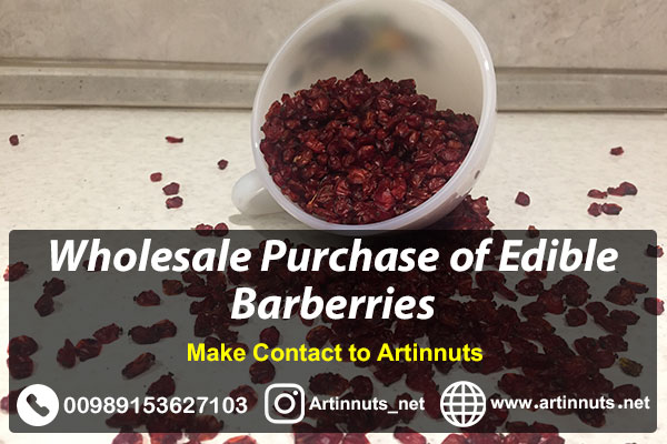 Wholesale Barberries Purchase