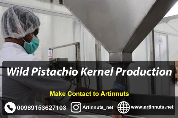 Wild Pistachio Kernel