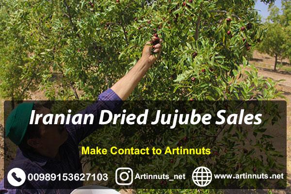 Iranian Dried Jujube