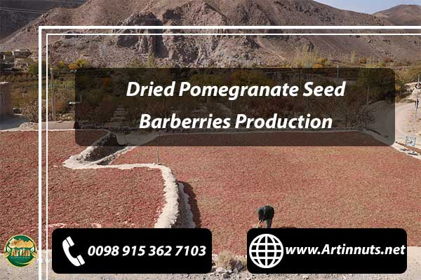 Pomegranate Seed Barberries