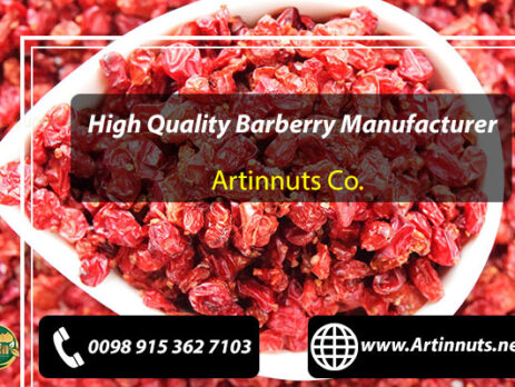 Barberry Manufacturer