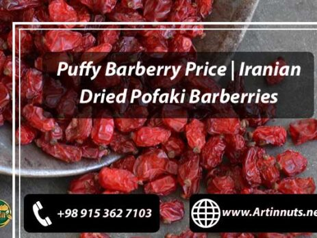 Puffy Barberry Price
